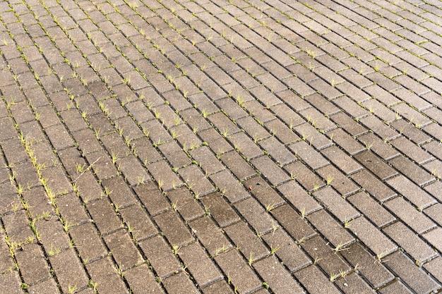 Pedra de pavimentação molhada com fundo de textura de grama verde