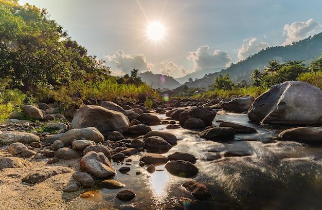 Pedra do rio e árvore com raio de sol, rio de pedra e raio de sol na floresta