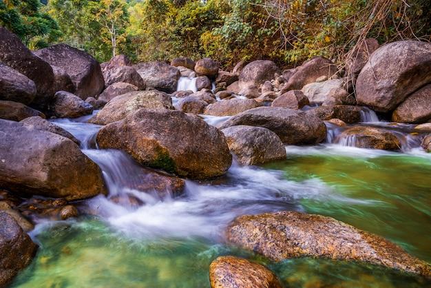 Pedra do rio e cachoeira, vista da árvore do rio de água