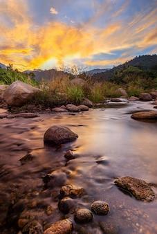 Pedra e árvore do rio com céu e nuvem coloridos, ver árvore do rio de água, rio de pedra e folha de árvore na floresta