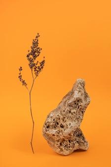 Pedra grande e flor seca na superfície laranja