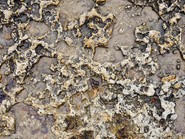 Pedra na areia, um close-up vista de pedras multicoloridas polidas lisas lavadas em terra na praia.