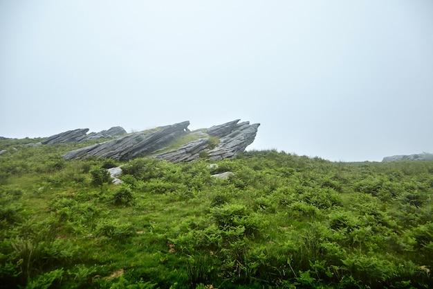 Pedras afiadas em uma colina verde no meio do nevoeiro