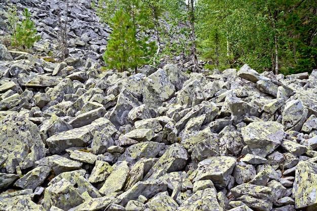 Pedras com mofo amarelo no sopé da montanha