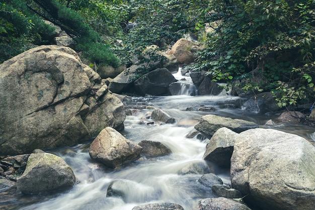Pedras da selva e água corrente