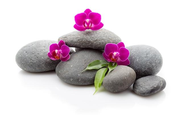 Pedras de massagem de spa e orquídea isoladas no fundo branco.