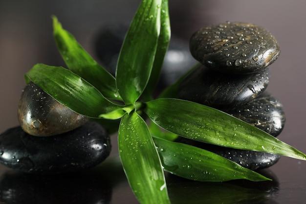 Pedras de massagem e folhas de bambu