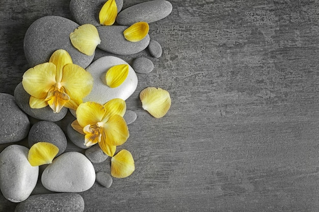 Pedras de spa com flores de orquídea, vista superior
