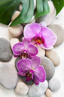 Pedras de spa com orquídeas