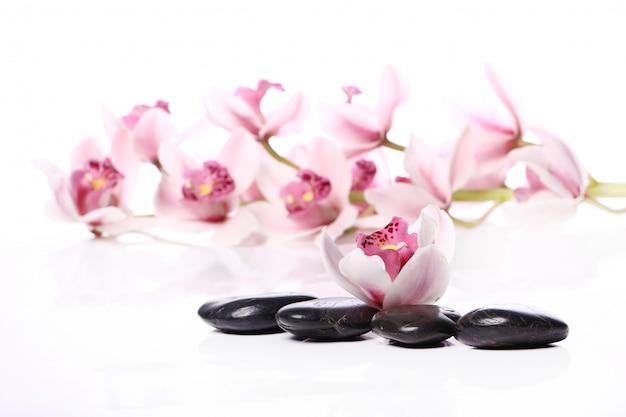 Pedras de spa e bela orquídea