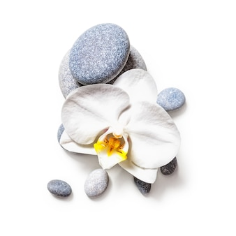 Pedras de spa e flor de orquídea branca isoladas no trajeto de grampeamento de fundo branco incluídas. postura plana