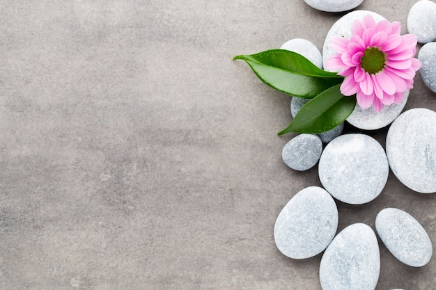 Pedras de spa e flores em fundo cinza.