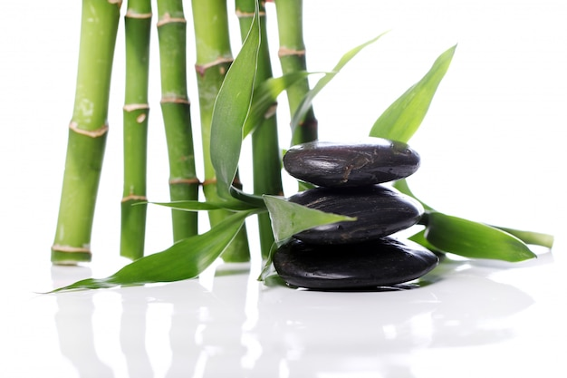 Pedras de spa e folhas de bambu