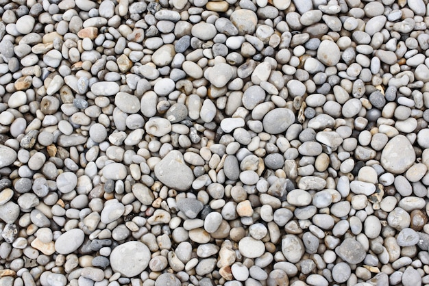 Pedras do mar seixos fundo náutico fundo da natureza da textura dos seixos do mar