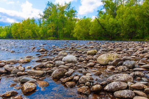 Pedras em um rio de montanha. natureza selvagem