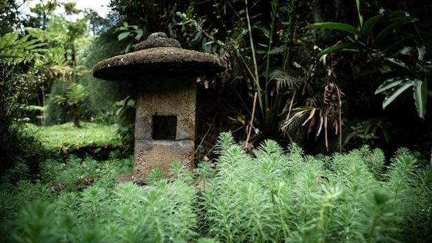 Pedras equilibradas na floresta