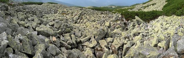 Pedras líquen-crescidas na região de gorgany das montanhas dos cárpatos (ucrânia). oito fotos compostas de imagem.