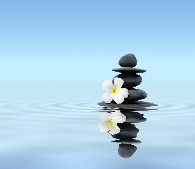 Pedras zen com flor de frangipani