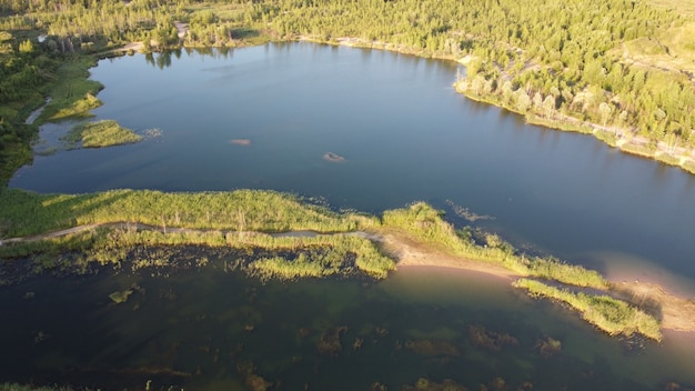 Pedreira de areia inundada e coberta de vegetação. paisagem de verão verdejante para férias ao ar livre, caminhadas, camping ou turismo. distrito de volokolamsk da região de moscou. praia sychevo, rússia