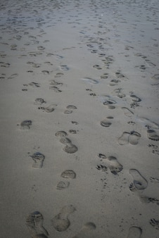 Pegada desarrumada na areia no dia ocupado