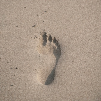 Pegada na areia ao longo da costa da costa rica