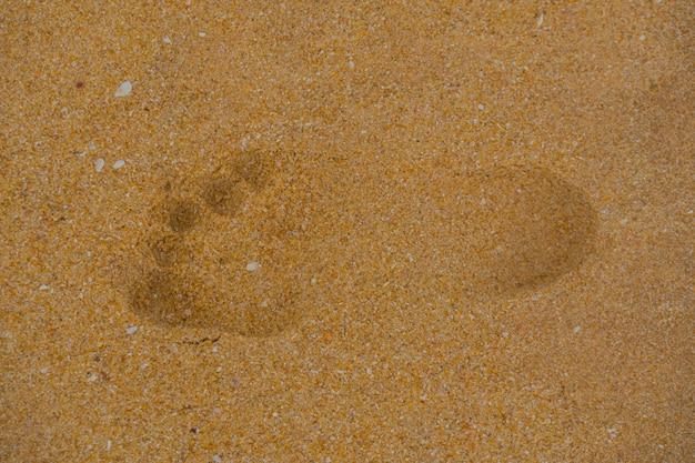 Pegada na areia na faixa costeira.