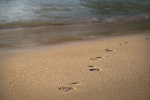 Pegadas na areia à beira-mar