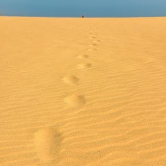Pegadas na areia até o topo da duna