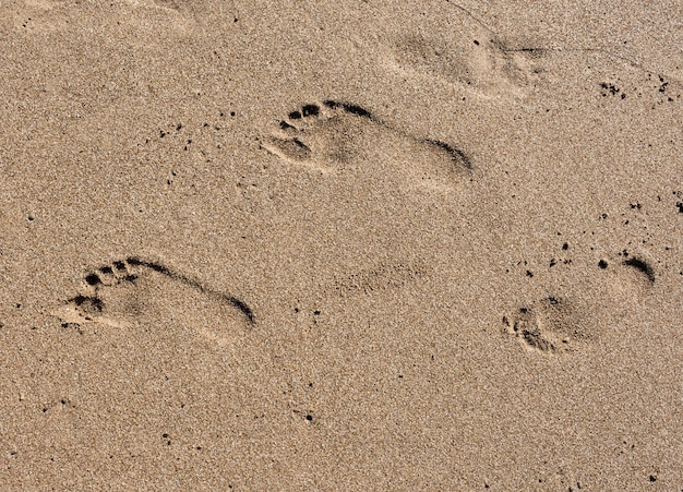 Pegadas na areia da praia ao pôr do sol