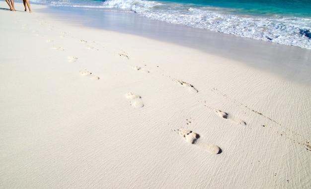 Pegadas na areia molhada da praia