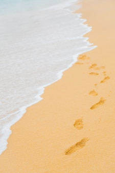 Pegadas na areia na faixa costeira.