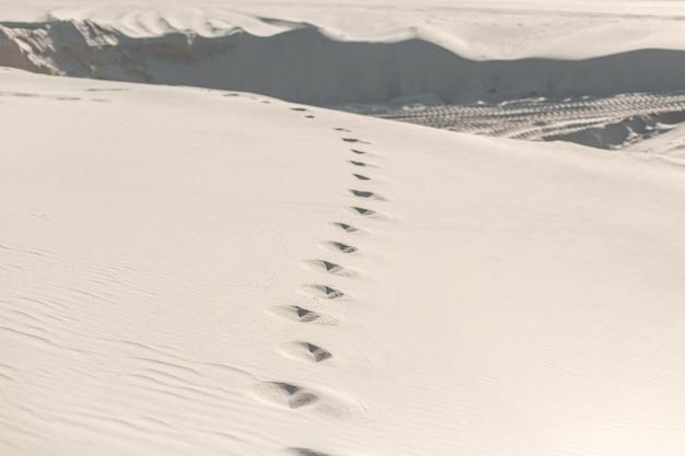 Pegadas no deserto arenoso