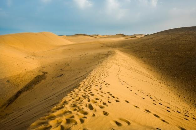 Pegadas para turistas de pessoas e placas exploradoras nas dunas do deserto