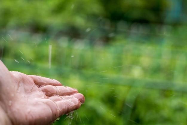 Pegando chuva cai