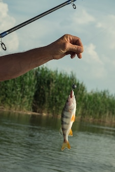 Peguei peixe na linha de pesca em frente a um rio.