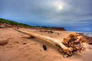 Pei praia paisagem hdr ilha