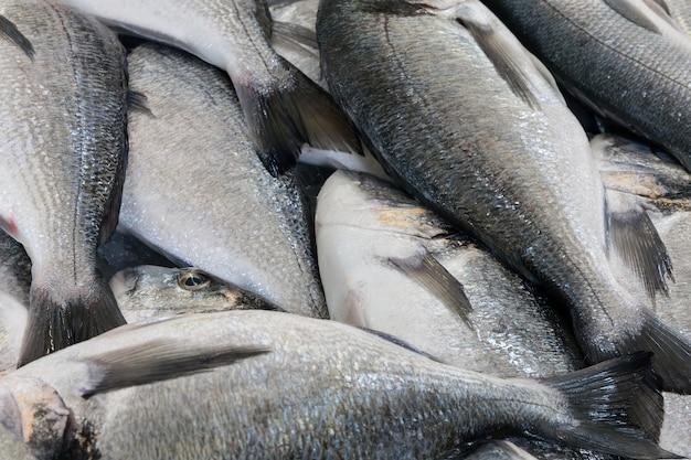 Peixe à venda no mercado da madeira
