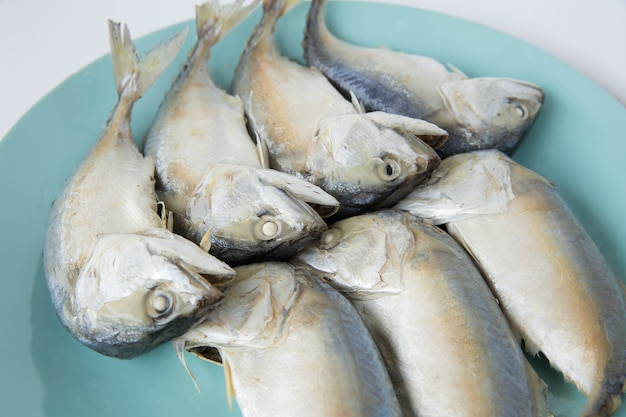 Peixe cavala cozido no vapor em uma placa azul sobre fundo branco