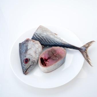Peixe cavala (peixe saba) no fundo branco