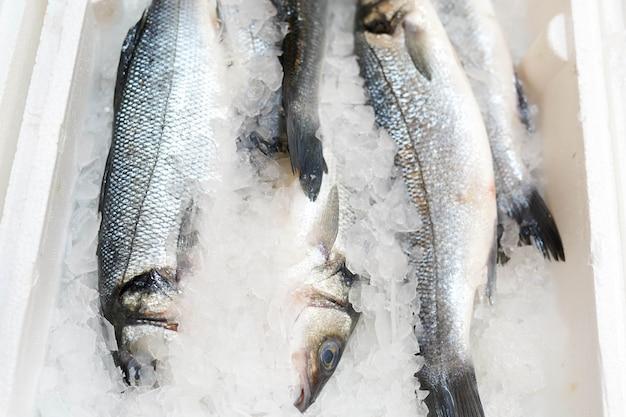 Peixe congelado no gelo no balcão da loja.