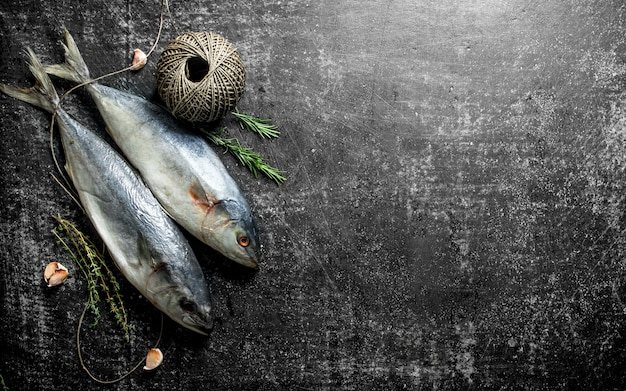 Peixe cru com tomilho, alecrim e barbante velho na mesa rústica escura