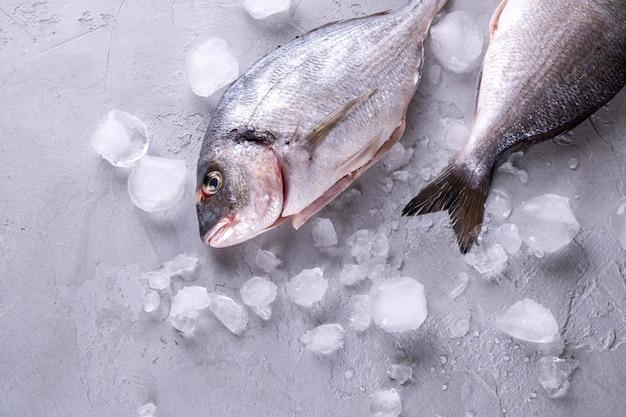 Peixe cru cru inteiro em cubos de gelo em um fundo cinza. vista superior com espaço de cópia.