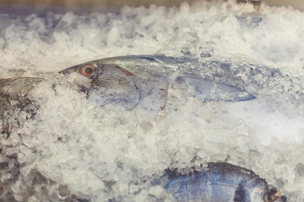 Peixe cru fresco na geladeira do supermercado ou restaurante