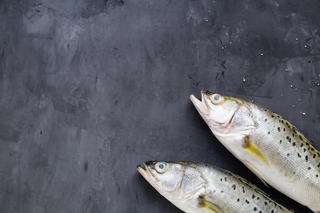 Peixe cru fresco no fundo de pedra escuro