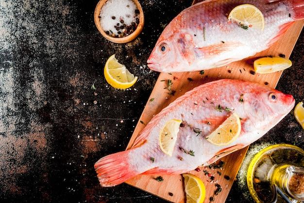 Peixe cru fresco rosa tilápia com especiarias para cozinhar - limão, sal, pimenta, ervas, na mesa de metal enferrujada preta, cópia espaço vista superior