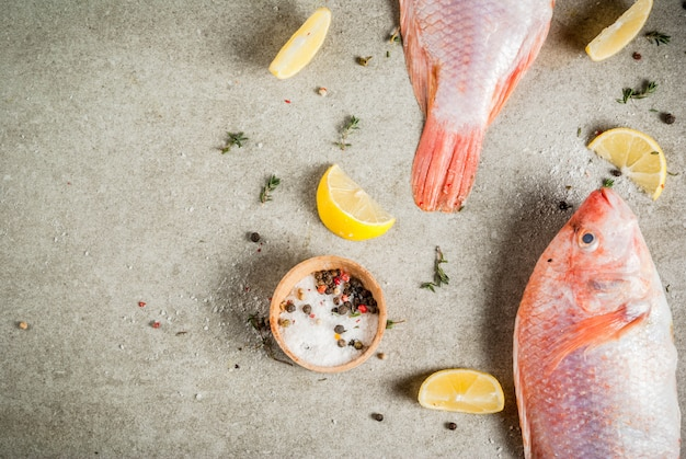 Peixe cru fresco rosa tilápia com especiarias para cozinhar limão, sal, pimenta, ervas, na mesa de pedra cinza, copyspace