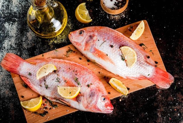 Peixe cru fresco rosa tilápia com especiarias para cozinhar