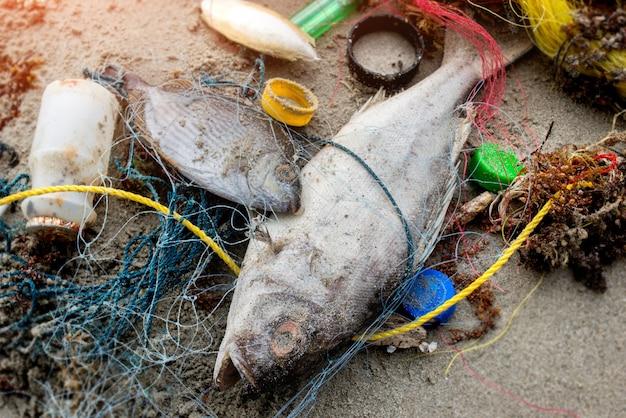 Peixe da morte na praia com lixo plástico