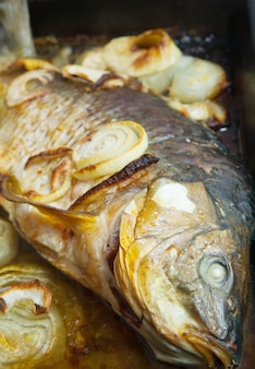 Peixe de carpas grelhado na grelha de cozinhar