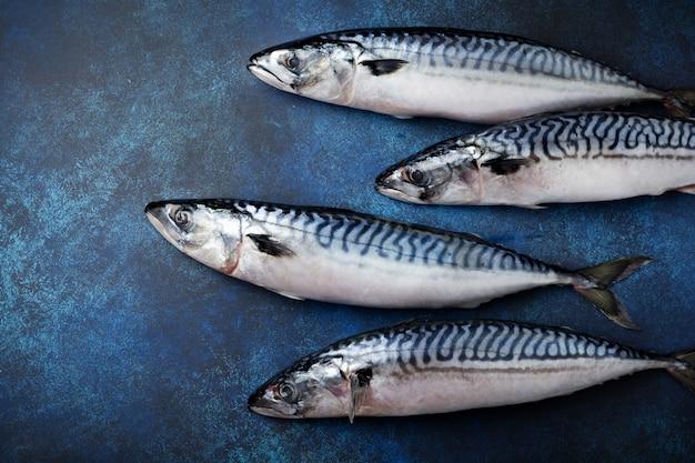 Peixe de cavala crua com ingredientes para cozinhar em um fundo azul de concreto ou pedra.